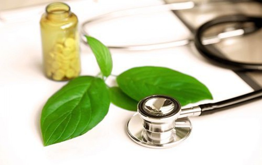 Best Fertility Naturopaths in Brisbane