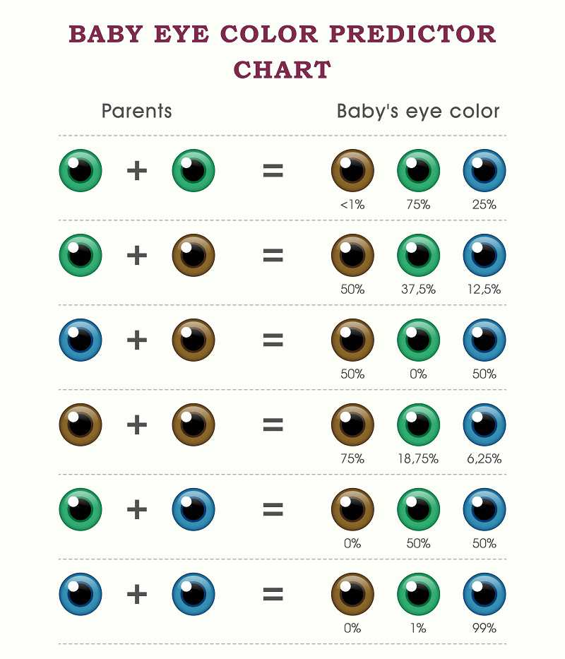 What_will_your_baby_look_like_baby_eye_colour_predictor_chart_babyinfo