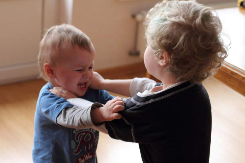 aggression_in_babies_toddlers_fighting_babyinfo
