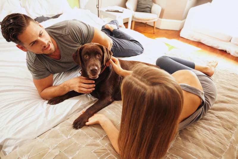 couple_with_a_dog_coping_with_infertility