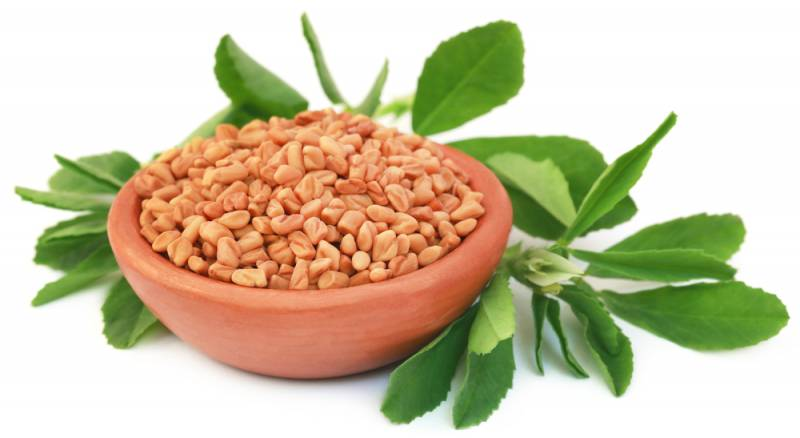 foods_for_breastfeeding_fenugreek_babyinfo