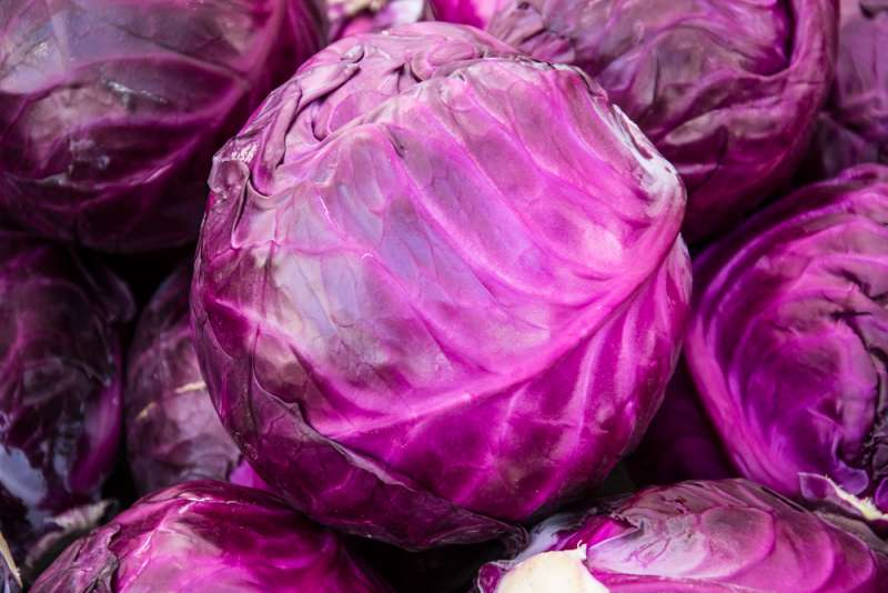 gender_prediction_in_the_first_trimester_red_cabbage_test_babyinfo_a_1556955426