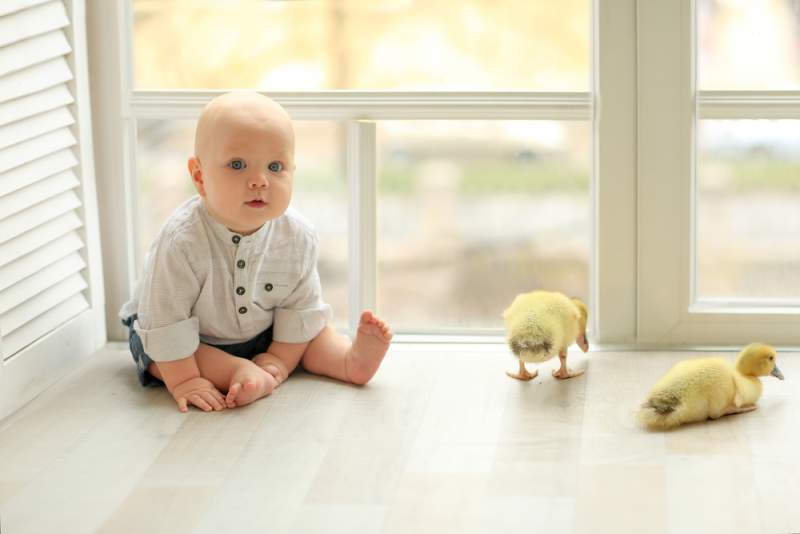 learning_to_sit_babyinfo_a_1556959269