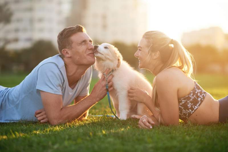 pet_makes_a_couple_responsible