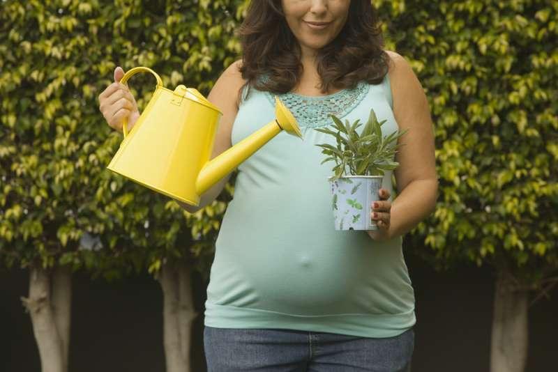 pregnancy_activities_gardening_babyinfo